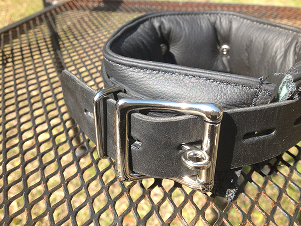 locking leather padded collar